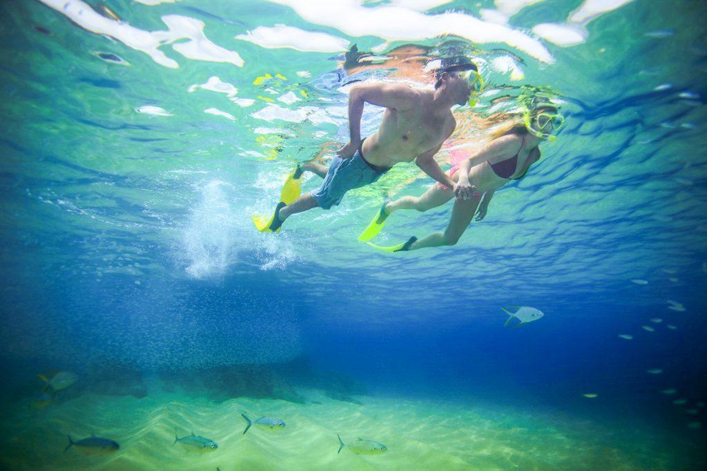 Los Cabos Snorkeling Tour (1 of 1)