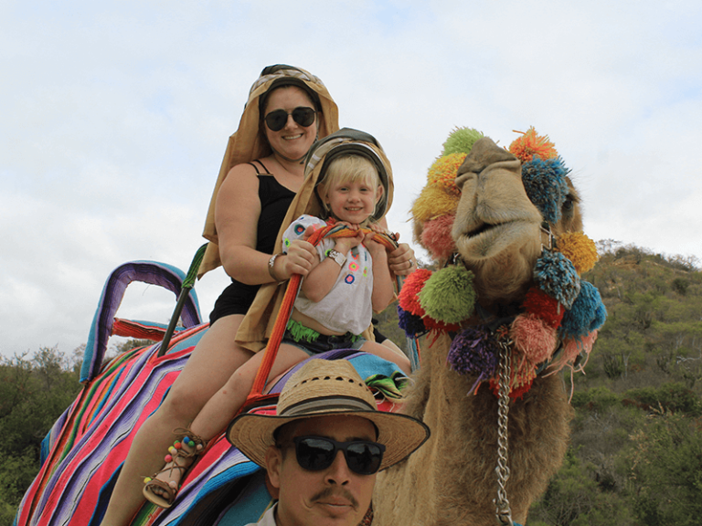 camel quest los cabos by official cabo concierge gallery image 04