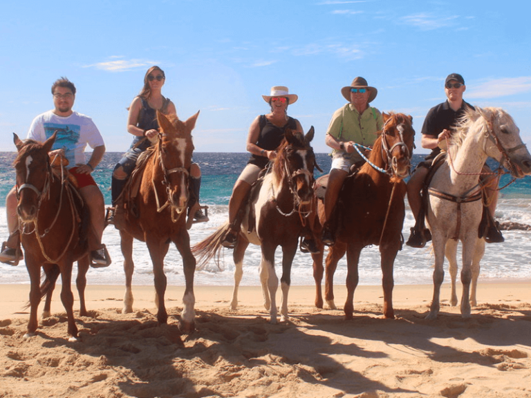 horse beach and desert ride by official cabo concierge gallery image 01
