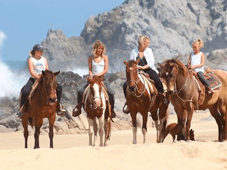 horse beach and desert ride by official cabo concierge gallery image 03